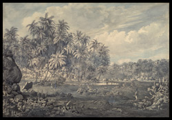 Coconut groves and village by the river: view near Point de Galle (Ceylon). Between December 1803 and January 1804